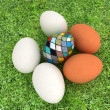 Eggs and easter eggs on the grass — Stock Photo