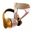 Chrome notes and gold headphones. Music concept — Stock Photo