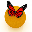Red butterflys on a oranges on a white background — Stock Photo