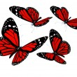 Red butterflies isolated on white background — Stock Photo #24239843
