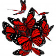 Red butterflies isolated on white background - Stock Photo