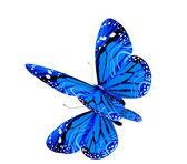 Yansıtıcı beyaz zemin üzerine mavi kelebek — Stok fotoğraf