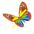 Stock Photo: Colorful butterfly