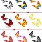 Butterflies botany set — Stock Photo #42705061