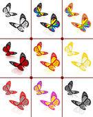 Kelebekler botanik seti — Stok fotoğraf