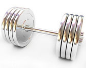 Metal dumbbell  — Stock fotografie