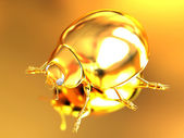 Golden beetle  — Stock Photo