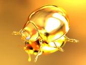 Golden beetle  — Stock Photo