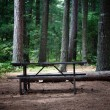 Picnic table in the wilderness — Stock Photo