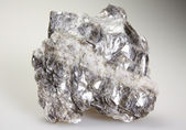 Muscovite - white mica — Stock Photo