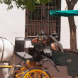 Detail of carriage in Sevilla — Stock Photo #13659667