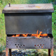 Stock Photo: Smokehouse on open fire