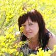 Portrait of a dark-haired girl in flowering acacias — Stock Photo