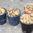 Four buckets of potatoes — Stock Photo