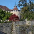Castle. Germany. - Stock Photo