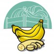 Ripe bananas — Stock Vector