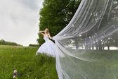 Bruden — Stockfoto