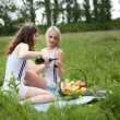 Picnic two girls  — Stock Photo #45257597