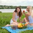 Picnic two girls  — Stock Photo #45257739