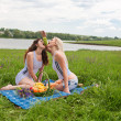 Picnic two girls  — Stock Photo #45257753