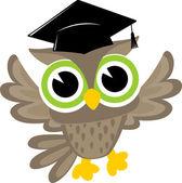 Happy owl graduation — Stock Vector