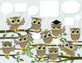 Social network cute birds — Stock Vector