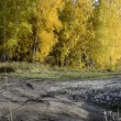 Crossroads near the autumnal forest - Stock Photo
