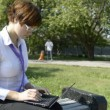 Business lady typing on laptop in the park — Stock Video