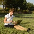 Businesswoman uses a laptop in autumn park sitting on the grass — Vídeo Stock