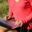 Young woman uses a laptop in autumn park sitting on the grass — Stock Video