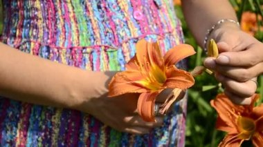 Young pregnant woman and flower daylily — Stock Video