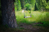Swinging empty children's swing in forest — Stock Photo