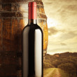 Red wine bottle — Stock Photo #13568397