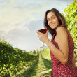 Red wine — Stock Photo #13865939