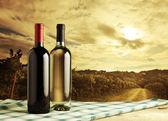 Wine bottles — Foto de Stock
