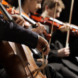 Classical music concert — Stock Photo #16771825