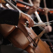 Stock Photo: Symphony concert, mplaying cello, hand close up