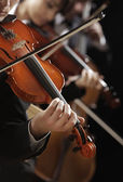 Classical music. Violinists in concert — Stock Photo