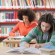 Two students in a library — Stock Photo #20207067