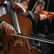 Classical music, cellist and violinists — Stock Photo #20833031