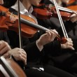 Classical music. Violinists in concert — Stock Photo #20833373