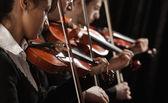 在音乐会上与小提琴 — 图库照片