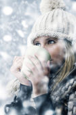 Snowy day — Stock Photo