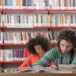 Two students in library — Foto Stock #25078887