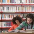 Stockfoto: Two students in library