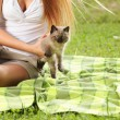I love cats! — Stock Photo