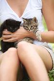 猫を愛する! — ストック写真