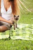 Io amo i gatti! — Foto Stock