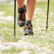 Nordic walking legs in mountains — Stock Photo #27453471
