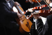 Classical music. Violinists in concert — Foto de Stock